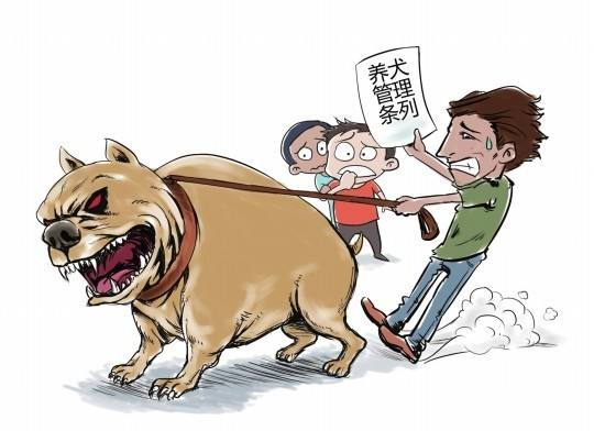 文成县人民政府关于加强犬类管理的通告