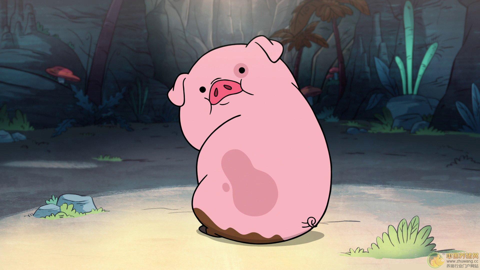 """猪头岩、猪肝山、猪儿潭背……有37个带""""猪""""字的温州地名"""