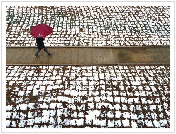 春日雪景 要不要这么美!