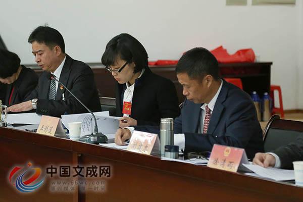 县十六届人大一次会议举行主席团第四次会议
