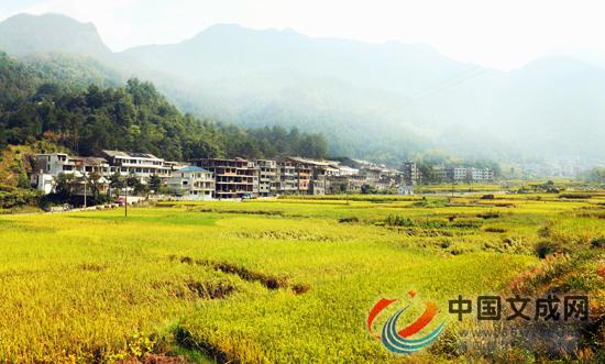 文成被评为浙江省2017年社会主义新农村建设优秀县