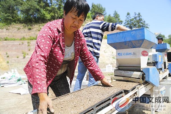 春耕播种忙 农业机械成农户种粮好帮手