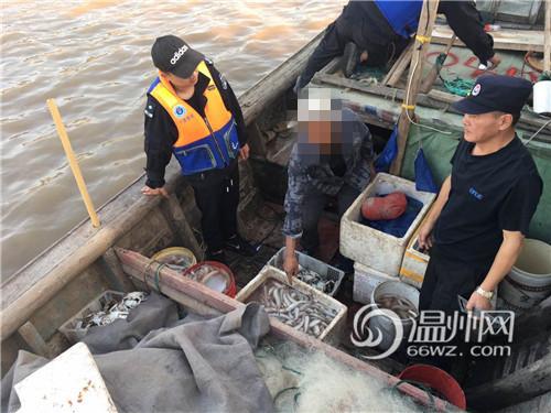 禁渔期非法捕捞约400公斤水产 苍南28名渔民被采取刑事强制措施