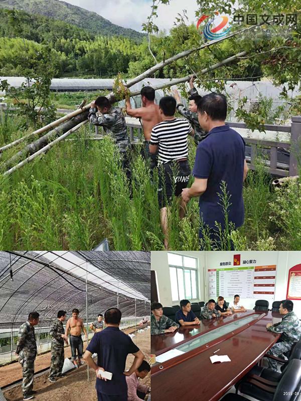 桂山乡应急排民兵集结待命 开展防台工作