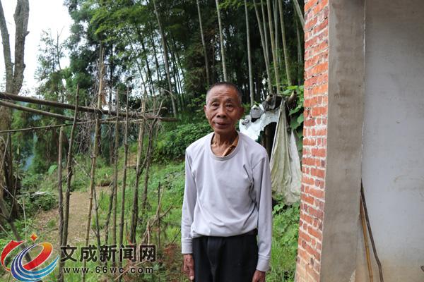 岭后村:彭必年