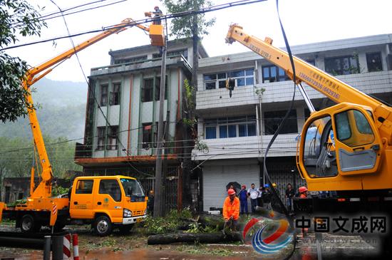 倒树砸断电线杆 多部门冒雨抢修