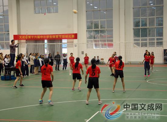 高中体育排球教学分层教学和合作学习论文