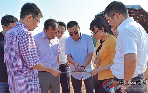 文成获国际通航协会中国区机构领导点赞