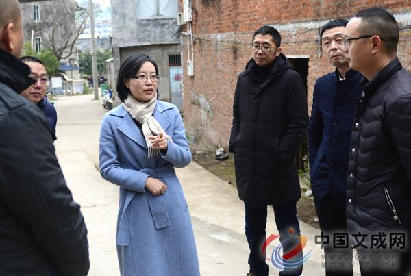 县委书记王彩莲调研龙船垟城市综合体项目进展情况